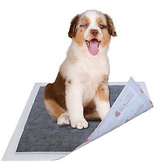 Pet Life 55 Grams Diabetic Dog Training Pads