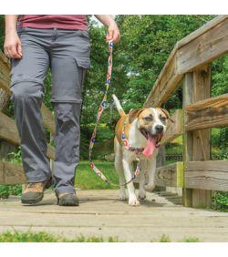 PetSafe Easy Walk Chic Dog Harness - Dog.com