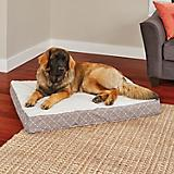 Quiet Time Donovan Mushroom Ortho Dog Bed