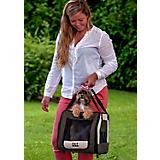 Pet Gear Car Seat and Carrier