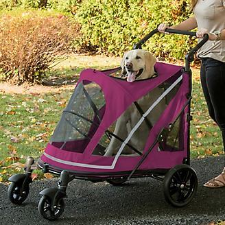 Pet Gear Expedition No Zip Stroller