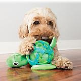KONG Sea Shells Dog Toy