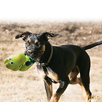 KONG Wiggi Dog Toy