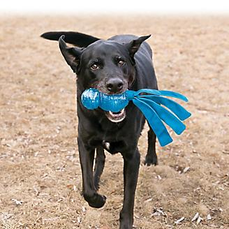KONG Wubba Comet Dog Toy
