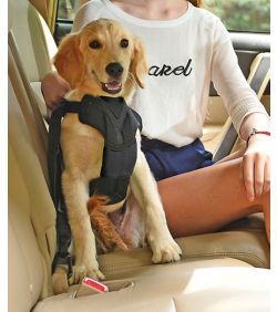 Pet Life Road-To-Safety Dog Car Harness - Dog.com