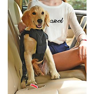 Pet Life Road-To-Safety Dog Car Harness