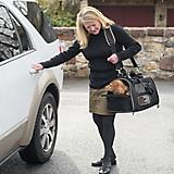 Gen7Pets Gen7 Commuter Pet Carrier