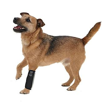 Extreme Neoprene Joint Protect Pet Sleeves