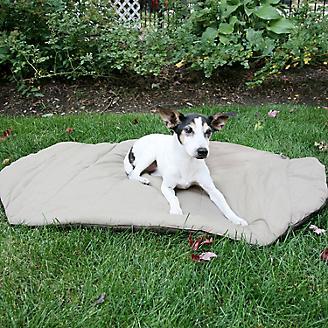 Bed in a Bag Olive Dog Bed