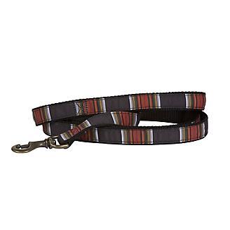 Pendleton Hiker Acadia Dog Leash