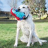 KONG DoDo Quirky Medium Dog Toy