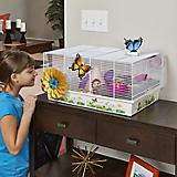 Critterville Butterfly Hamster Home