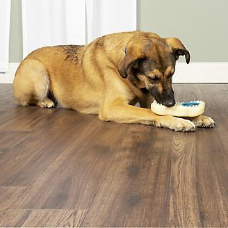 PetSafe Forever Bone Dog Toy