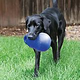 KONG Bounzer Ultra Dog Toy
