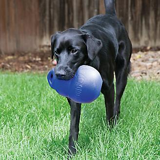 KONG Bounzer Ultra Dog Toy