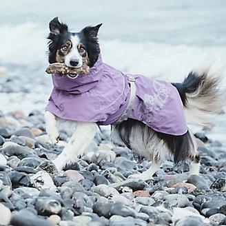 Hurtta Drizzle Dog Coat