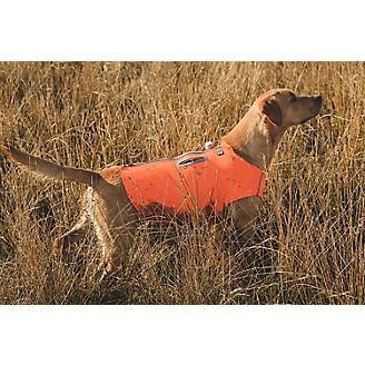 Hurtta Orange Rambler Dog Vest