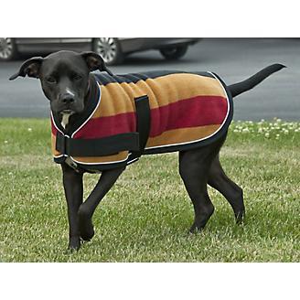 Intrepid Traditional Pattern Dog Coat