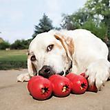 KONG Goodie Ribbon Dog Toy