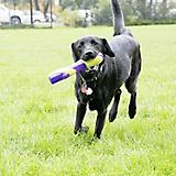 KONG Squeezz Bitz Stick Dog Toy