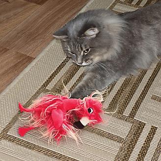 KONG Softies Frizz Bird Assorted Cat Toy