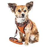 Pet Life Pawsh Dog Harness/Leash