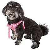 Pet Life Chichi Shaggy Dog Harness