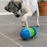 KONG Spin It Dog Toy