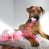 KONG Stretchezz Curlz Medium Dog Toy