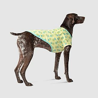 Canada Pooch Pineapples Follow Me Dog Tee
