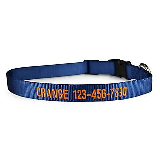 Personalized Midnight Sky Nylon Dog Collar