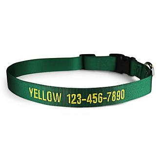 Personalized Green Nylon Dog Collar