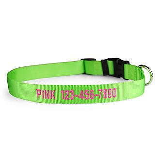 Personalized Lime Zest Nylon Dog Collar