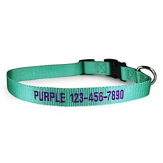 Personalized Mint Green Nylon Dog Collar