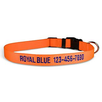 Personalized Neon Orange Dog Collar