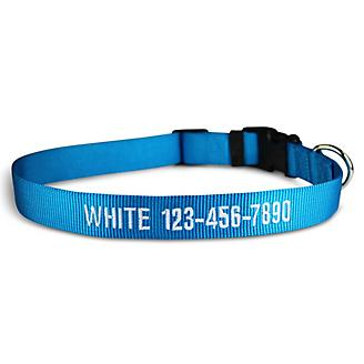 Personalized Hurricane Blue Dog Collar