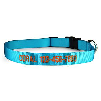 Personalized Sunny Blue Nylon Dog Collar