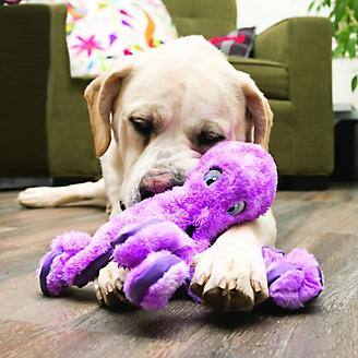KONG SoftSeas Octopus Dog Toy