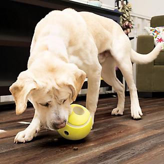 KONG Rewards Tennis Ball Dog Toy