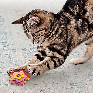 KONG Crackles Bloomz Cat Toy 2 Pack