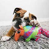 KONG Shieldz Medium Dog Toy