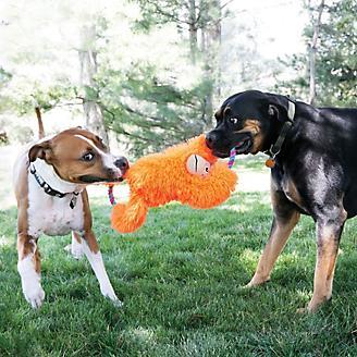 KONG Tuggz XLarge Dog Toy