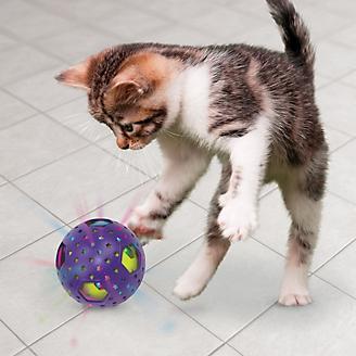 KONG Bat A Bout Flicker Disco Cat Toy