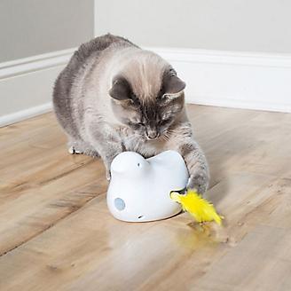 PetSafe Peek A Bird Automatic Cat Toy