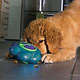 KONG Flipz Dog Toy