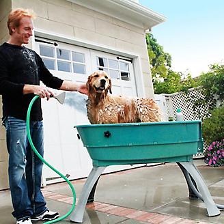 Booster Bath Elevated Dog Bath
