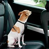 KH Mfg Travel Black Safety Pet Harness