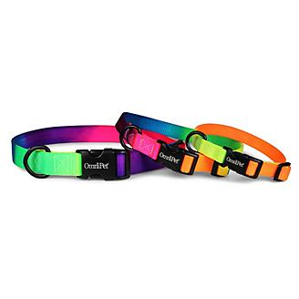 Kwik Klip Nylon Rainbow Dog Collar