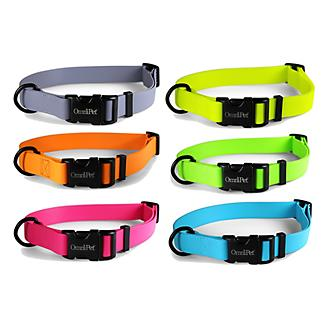 Carnival Waterproof Dog Collar