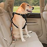 Kurgo Direct to Seatbelt Tether